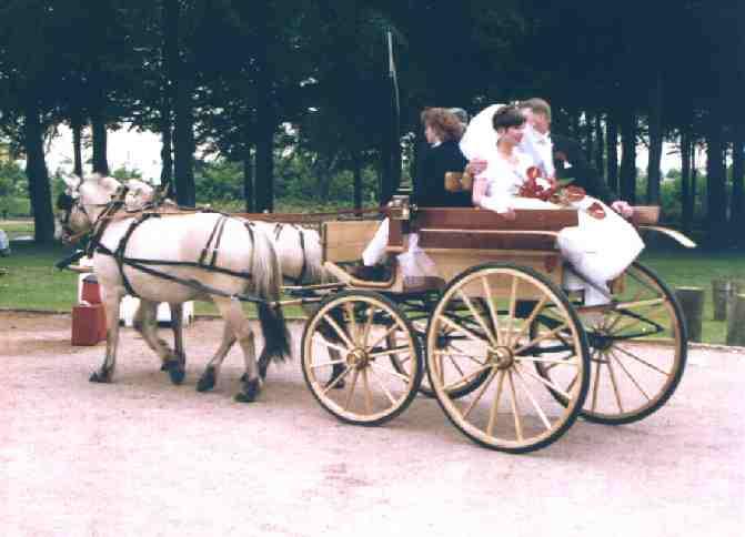 hestekørsel bryllup